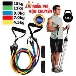 Bộ 5 dây đàn hồi tập gym thể hình đa năng loại tốt Dụng cụ tập gym
