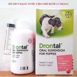 Thuốc tẩy giun nước cho chó - Drontal