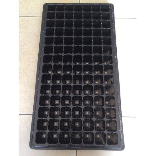 5 khay ươm hạt giống 98 lỗ