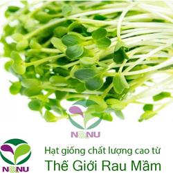 Gói 1kg Hạt giống rau mầm củ cải trắng New Zealand _ Thế Giới Rau Mầm