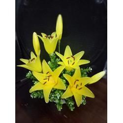 Hoa voan bách hợp 3 sắc màu