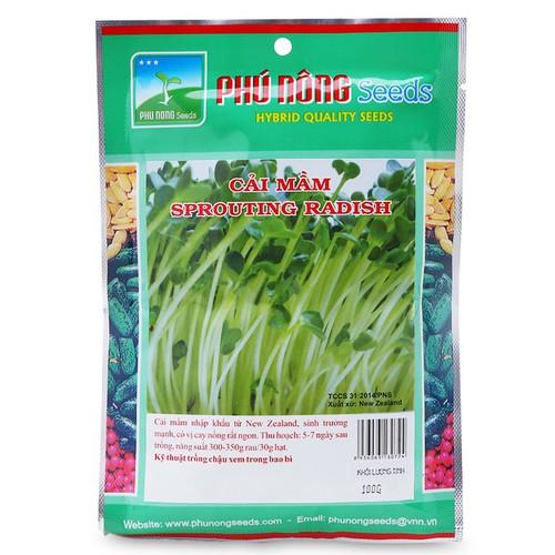 Hạt giống Cải mầm 100g