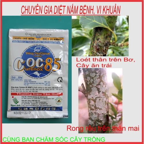Thuốc trừ Nấm, Khuẩn trên cây trồng COC 85 WP BỘ 2 Gói