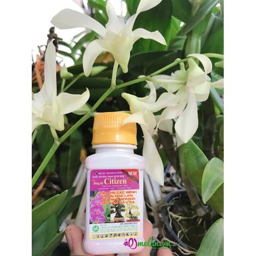 Thuốc trừ bệnh chuyên cho hoa cây cảnh Citizen20ml