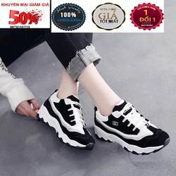 Giày Nữ Chuyên Dụng thể thao