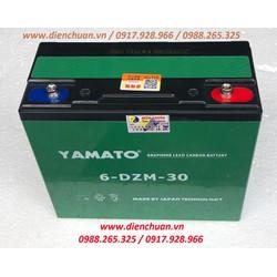 Ắc quy viễn thông 12V 30Ah Yamato 6-DZF-30 -6-DZM-30