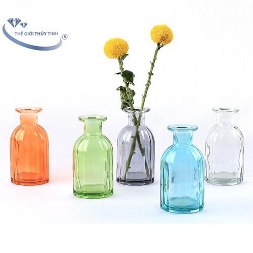 Bình Bông Lọ Hoa Hình Chai Nhiều Màu Size Nhỏ Cẩm Đạt