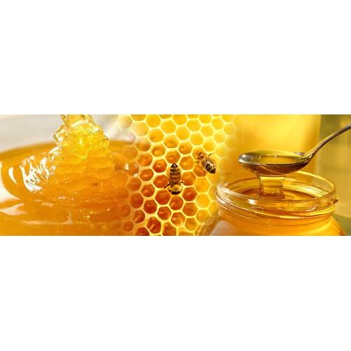 Mật ong hoa nhãn Hưng Yên nguyên chất - 5551729 , 11961351 , 15_11961351 , 230000 , Mat-ong-hoa-nhan-Hung-Yen-nguyen-chat-15_11961351 , sendo.vn , Mật ong hoa nhãn Hưng Yên nguyên chất