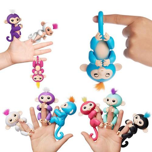 Khỉ leo ngón tay hàng độc