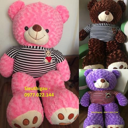 SIÊU RẺ ĐẸP ❤️ Gấu bông Teddy khổ m2 Nhiều màu ❤️ mập căng đẹp - 6781919 , 13482589 , 15_13482589 , 359000 , SIEU-RE-DEP-Gau-bong-Teddy-kho-m2-Nhieu-mau-map-cang-dep-15_13482589 , sendo.vn , SIÊU RẺ ĐẸP ❤️ Gấu bông Teddy khổ m2 Nhiều màu ❤️ mập căng đẹp