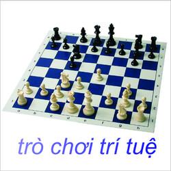 Bộ cờ vua giải trí _ Trò chơi trí tuệ