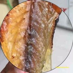 1kg Cá Chỉ Vàng ngon nguyên chất quà tặng ý nghĩa dịp lễ tết