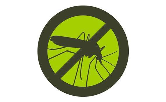 Đèn bắt muỗi chính hãng Daewoo DWIK-780 2