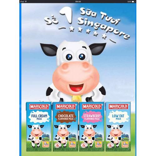 Sữa tăng cân tăng chiều cao Marigold Singapore