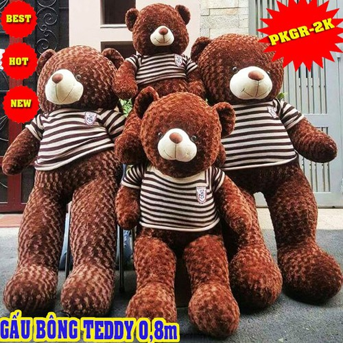 GẤU BÔNG TEDDY - GẤU BÔNG TEDDY