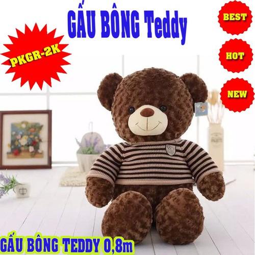 GẤU TEDDY - GẤU TEDDY