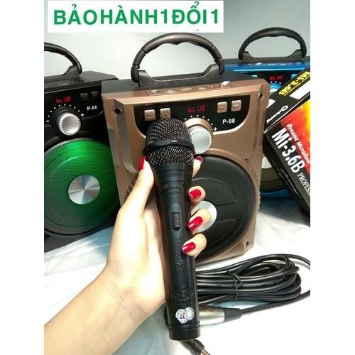 Loa Bluetooth Karaoke với kích thước gọn + 1 Mic dây Arirang