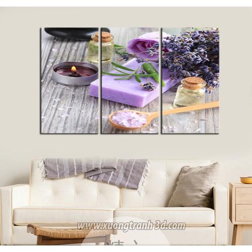 Tranh bộ 3 bức trang trí spa tặng kèm móc treo