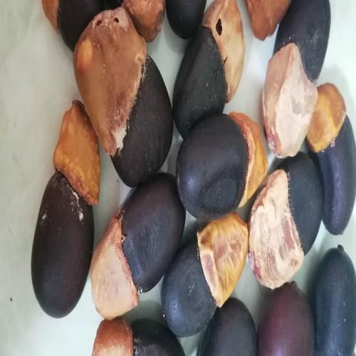 Hạt giống cây bồ đề - 6977893 , 13719486 , 15_13719486 , 20000 , Hat-giong-cay-bo-de-15_13719486 , sendo.vn , Hạt giống cây bồ đề