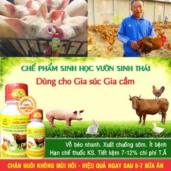 Chế phẩm sinh học Vườn Sinh Thái cho Gia súc, Gia cầm - Chăn nuôi không mùi hôi