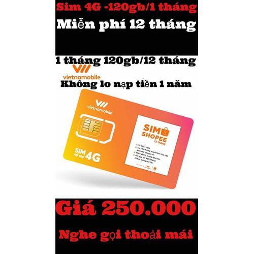 sim vietnamobile