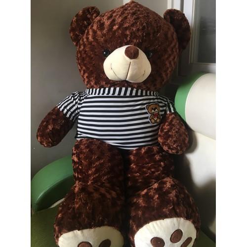 GẤU BÔNG ❤️ Gấu bông Teddy khổ m2 Nhiều màu ❤️ mập căng đẹp