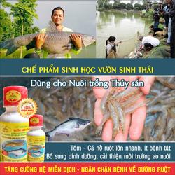 Chế phẩm sinh học VƯỜN SINH THÁI cho Thủy Sản: Tôm, Cá, Ếch