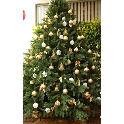 Cây thông noel - cây thông pe xanh 2m1 - 17957458 , 22514020 , 15_22514020 , 3975000 , Cay-thong-noel-cay-thong-pe-xanh-2m1-15_22514020 , sendo.vn , Cây thông noel - cây thông pe xanh 2m1