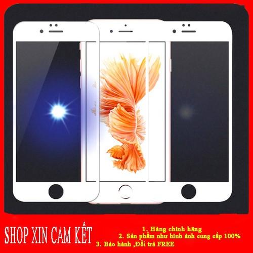 Kính cường lực full màn hình iphone 6, 6s kính cường lực full màn hình aloshop77