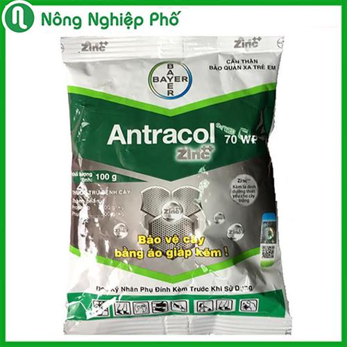 Thuốc trừ nấm bệnh cây trồng antracol - 100gram