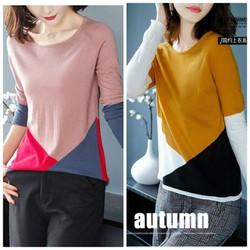 Áo len dệt kim phối màu cao cấp BY4431