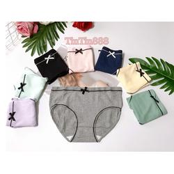 [ảnh shop chụp] Combo 10 quần lót nữ cotton gân tăm tre cao cấp, quan lot nu - TinTin888