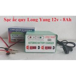 Bộ sạc bình ắc quy 2 chế độ 6V và 12V - 8A