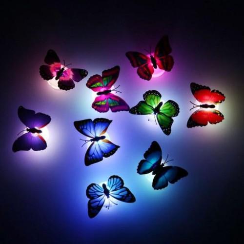 Combo 10 đèn bướm phát sáng dính tường giá sỉgiá rẻ siu siu rẻ