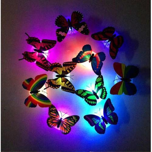 Đèn ngủ hình bướm phát sáng cực hot miễn phí shjp