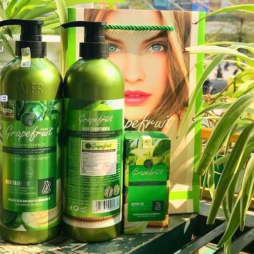 Cặp dầu gội xả đặc trị rụng tóc hương bưởi grapefruit - phục hồi tóc hư tổn - giúp mái tóc bóng mượt - 20252930 , 22891283 , 15_22891283 , 199000 , Cap-dau-goi-xa-dac-tri-rung-toc-huong-buoi-grapefruit-phuc-hoi-toc-hu-ton-giup-mai-toc-bong-muot-15_22891283 , sendo.vn , Cặp dầu gội xả đặc trị rụng tóc hương bưởi grapefruit - phục hồi tóc hư tổn - giúp