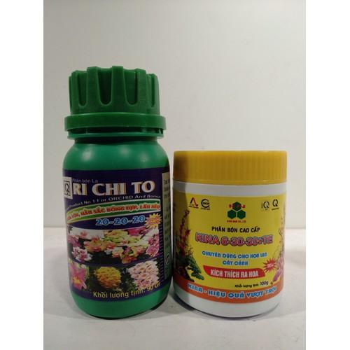 Combo phân bón cao cấp kina 6-30-30 kích thích ra hoa + phân bón richito- hoa lớn, màu đẹp,lâu héo