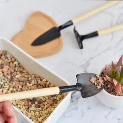 Dụng cụ chăm sóc cây cảnh - 3 món dụng cụ chăm sóc cây cảnh