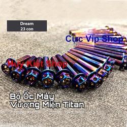 Bộ Ốc Máy Vương Miện Titan Cho Xe Wave MS2120