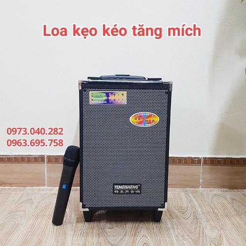 Loa karaoke bluetooth-loa kéo mini-loa kéo temeisheng chính hãng