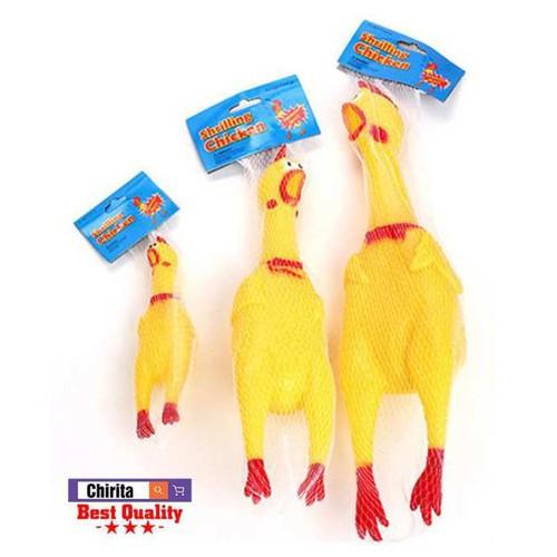 Rẻ vô địch gà la hét loại sịn video tự quay chuyensibaic