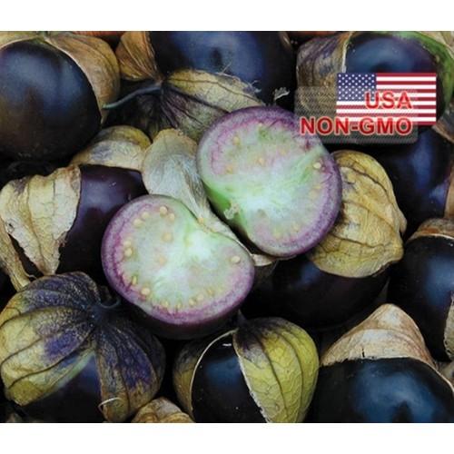 Hạt giống cà chua tomatillo - tím- gói 3 hạt