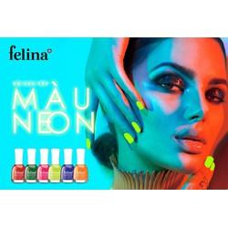Combo 6 chai sơn Felina màu Neon - BST 2020