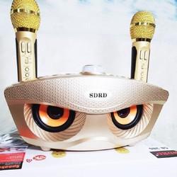 Loa karaoke SD 306 giá tốt