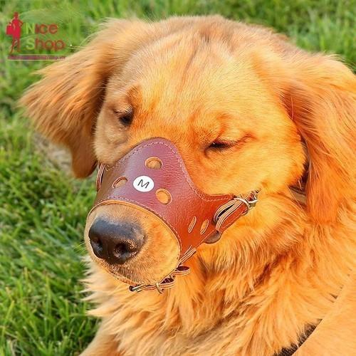 Bịt mỏ chó - 20832434 , 23875996 , 15_23875996 , 35000 , Bit-mo-cho-15_23875996 , sendo.vn , Bịt mỏ chó