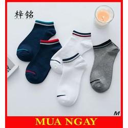 Combo 5 đôi vớ tất nam nữ ngắn cổ dáng lười viền cổ Hàn Quốc siêu hot TN04