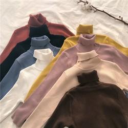 Áo len dệt kim - Áo len dệt kim - Áo len dệt kim dáng cao cổ