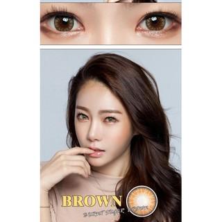 Lens mắt kính áp tròng Nâu Brown, không độ, Tặng khay đựng sử dụng 1 năm không cộm mắt l9 - l9 thumbnail