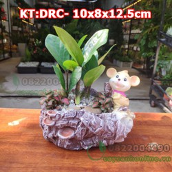 Chậu chuột phát tài chậu trồng cây cảnh để bàn chất liệu composite cao cấp hình con chuột