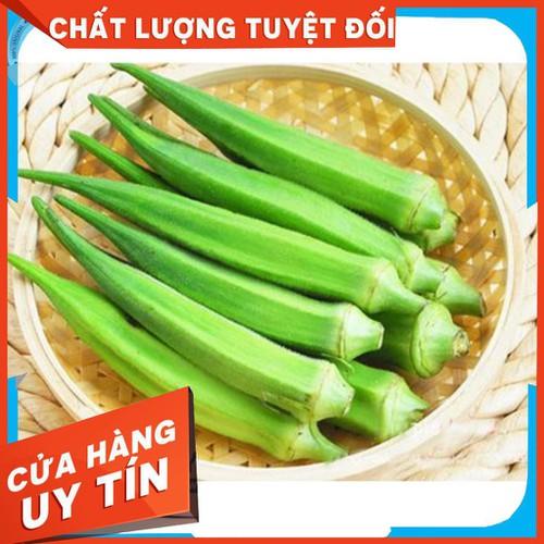 10g hạt giống đậu bắp xanh abelmoschus esculentus - 20975241 , 24073242 , 15_24073242 , 17000 , 10g-hat-giong-dau-bap-xanh-abelmoschus-esculentus-15_24073242 , sendo.vn , 10g hạt giống đậu bắp xanh abelmoschus esculentus